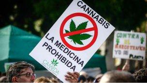 El cannabis medicinal aún no es legal en Argentina