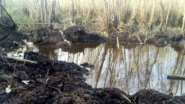 Impactante: Encontraron dos cuerpos en el avión que cayó en el Delta
