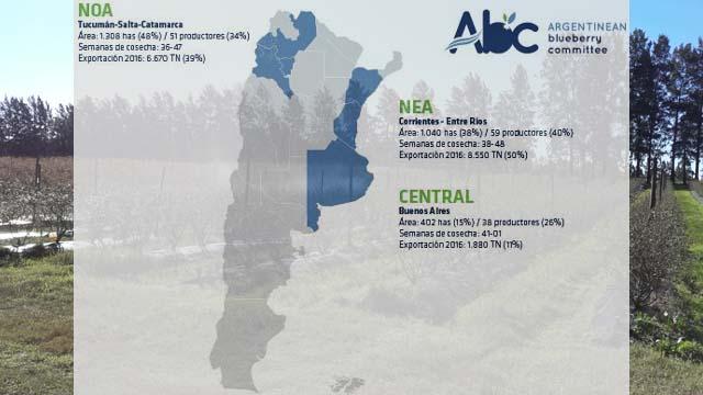 Hectáreas por región, según ABC.