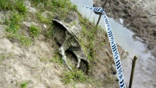 Hallan ejemplar de gran valor arqueológico oculto en tierras entrerrianas