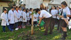 Un árbol en homenaje a la Madre Isabel Fernández