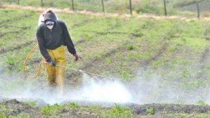 Localidad entrerriana lidera el ranking mundial de contaminación por Glifosato