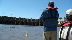 En el centro del debate, la pesca en el río Uruguay