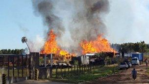 Bomberos de toda la región combatieron el fuego en el Parque Industrial