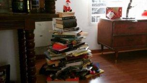 ¿Por qué una pareja de Paraná armó el árbol de Navidad con libros?