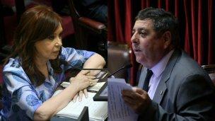 Luego de la sesión en el Senado, De Angeli cargó contra CFK