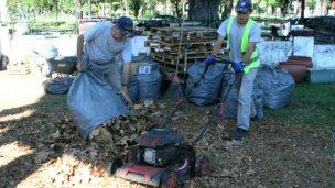 Convierten hojas y ramas en compost para espacios públicos