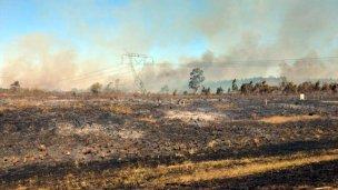 Lograron apagar el incendio que arrasó con 100 hectáreas