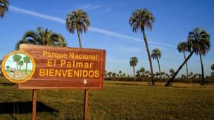 ¿Qué mejoras se hicieron en El Palmar de Colón?