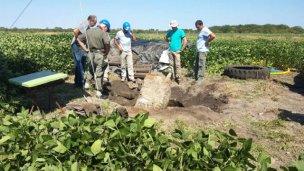 Causa Gill: cuarto día de excavaciones arrojó nuevas pistas