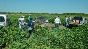 Causa Gill: macabro hallazgo durante las excavaciones