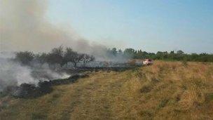 Incendio mató animales y amenazó a una escuela