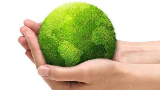 Imagen de Globalvision.com